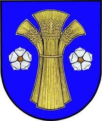 logo_dolní lutyně